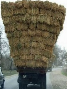 Hay-on-lorry-228x300