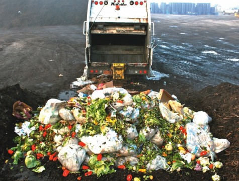 Shocking-food-waste-1024x776